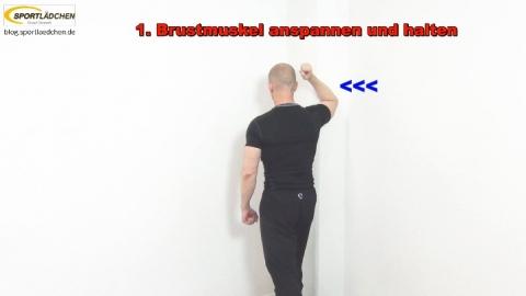 Brust 1