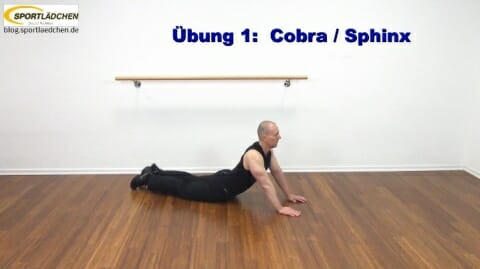 core-training-cobra-sphinx-1