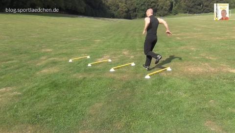 koordinationsstangen-auf-markierungshuetchen-einbeiniger-sprung-2-jpg