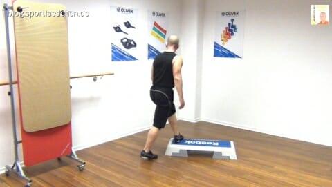 step-aerobic-choreo-august-2013n-vol-2-bild-4