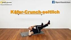 Kaefer Crunch mit Widerstand 2.JPG