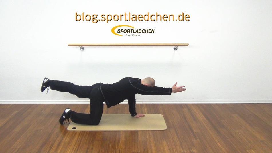 Bird Dog - Klassiker der Rückengymnastik Übungen