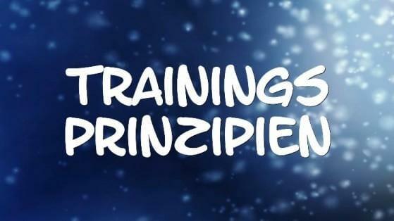 Trainingsprinzipien und Fitness