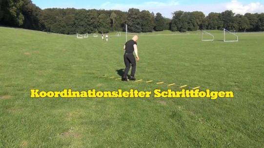 Koordinationsleiter Schrittfolgen