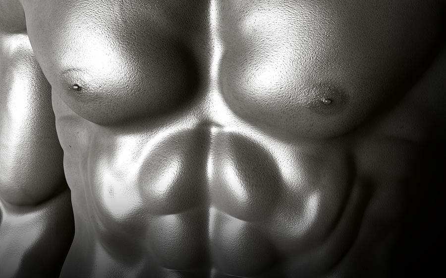 Wie kann man Muskeln definieren?