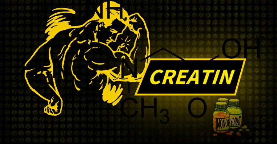 Die Wirkung von Creatin Monohydrat