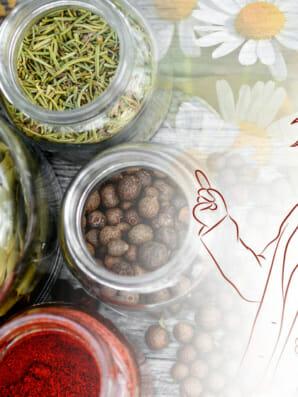 Phytotherapie - Krankheiten behandeln mit Heilpflanzen