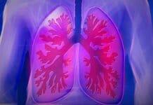 Aufgabe der Lunge einfach erklärt
