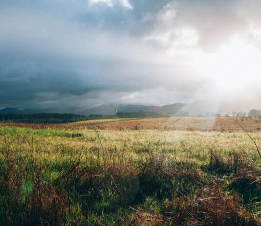Auf Regen folgt Sonnenschein: Linke Bildseite Regen rechte Bildseite Sonnenschein