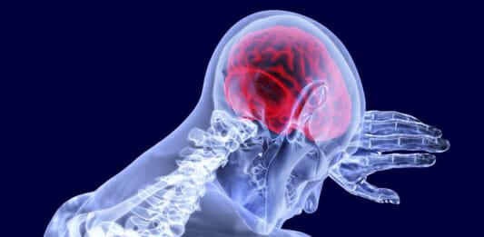 Illustration: Blick in das innere des Menschen - Gehirn als Schaltzentrale für alle menschlichen Bewegungen