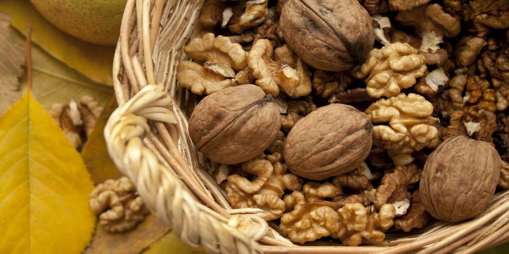 Gesunde Lebensmittel: Nüsse allerlei in einem Korb