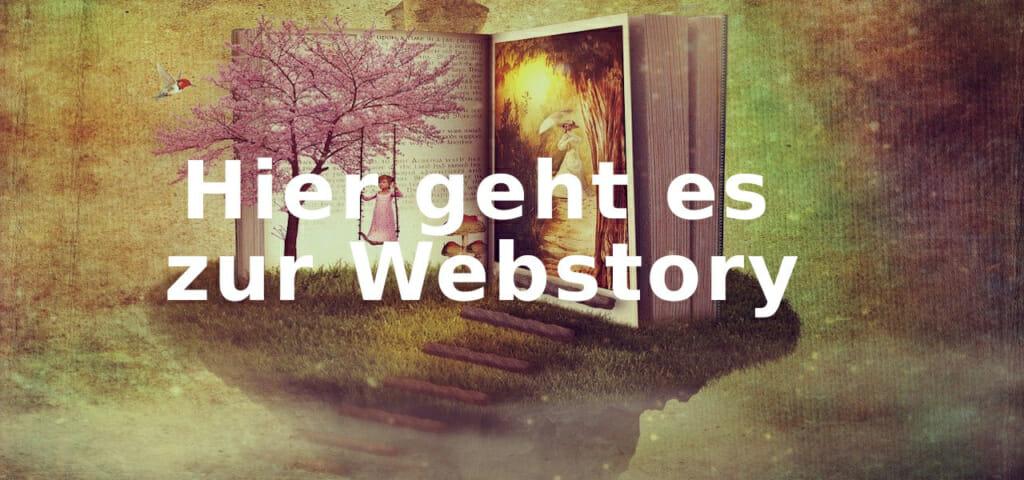 Webstory Beitragsbild 1