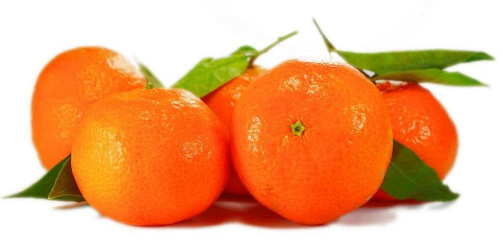 mandarine weisser hintergrund