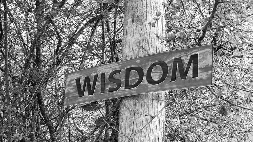 """Fitness Zitate - Hölzerndes Schild mit der Aufschrift """"Wisdom"""" (Weisheit)"""