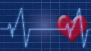 Herz-Kreislauf-System dargestellt aus einem Symbolbild aus Herz und Liniendiagramm